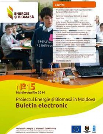 Энергия и биомасса, электронный бюллетень № 15