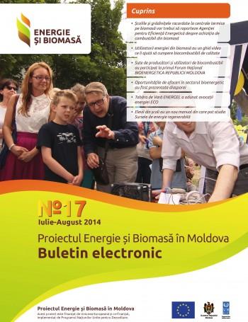 Энергия и биомасса, электронный бюллетень № 17