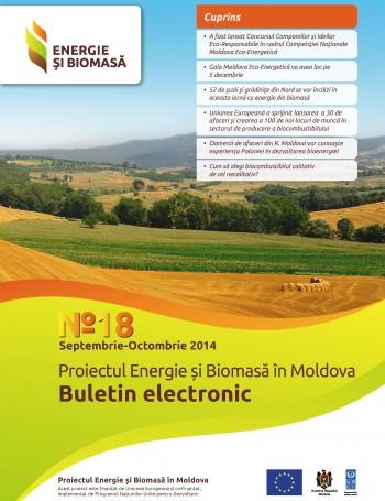 Энергия и биомасса, электронный бюллетень № 18