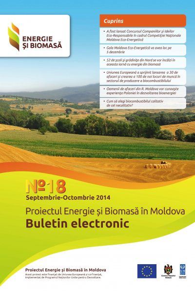 Energie si Biomasa, Buletin Electronic Nr. 18