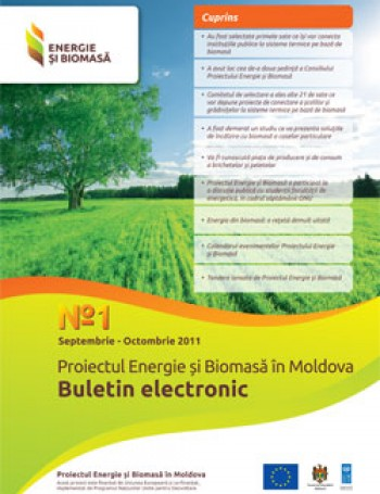 Биомассы и электронный бюллетень № 1