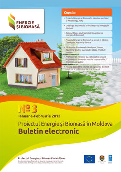 Biomass Energy and Electronic Bulletin No. 3