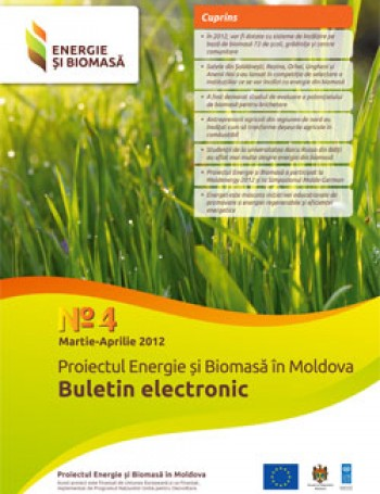 Biomass Energy and Electronic Bulletin No. 4