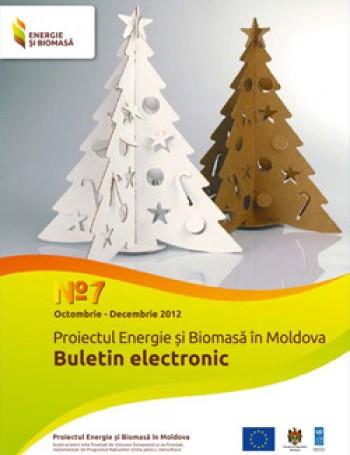 Биомассы и электронный бюллетень № 7