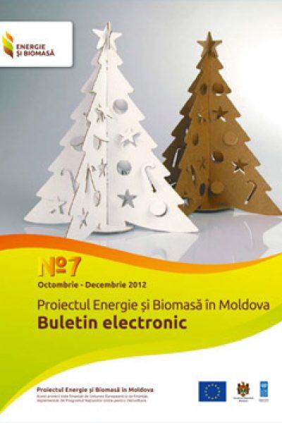 Energie si Biomasa Buletin Electronic Nr7