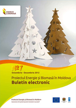 Biomass Energy and Electronic Bulletin No. 7