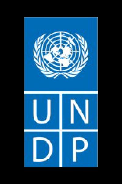undp-1