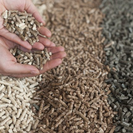 How to choose quality briquettes and pellets