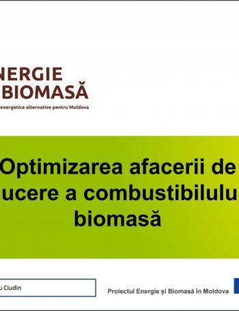 Optimizarea afacerii de producere a combustibilului din biomasă