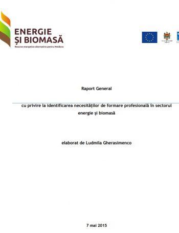 Raportul cu privire la identificarea necesităților de formare profesională în sectorul energie și biomasă