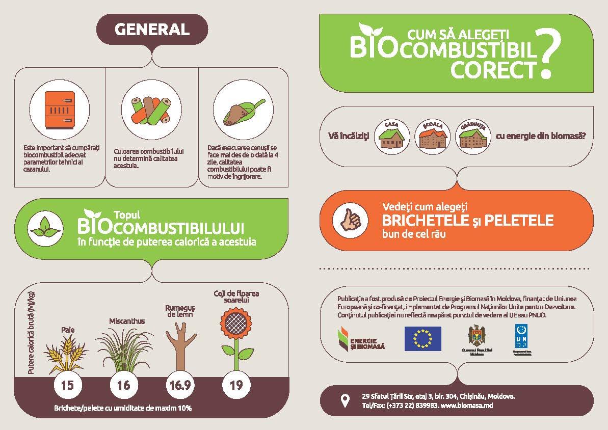 Cum sa alegi biocombustibilul corect