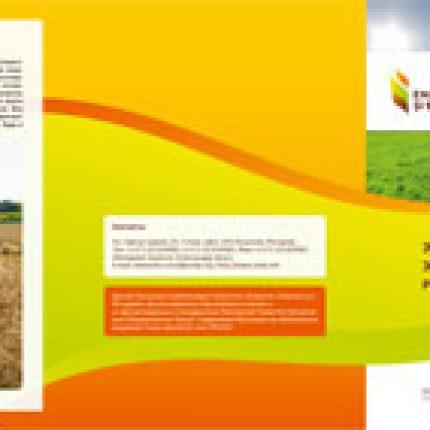 Энергия из биомассы – энергия, которая находится рядом с тобой