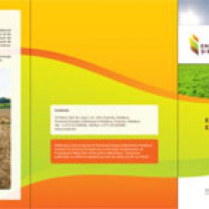 Energia din biomasă — energia de lângă tine
