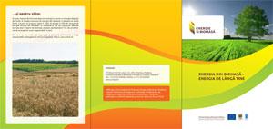 Energia din biomasă – energia de lângă tine