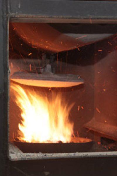 În 2013, Proiectul Energie şi Biomasă va acoperi toată Republica Moldova