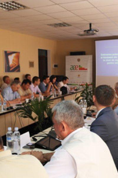 Experţi şi producători de brichete şi pelete discută cum să asigure calitatea biocombustibilului produs în Republica Moldova