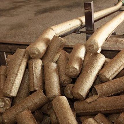 Antreprenorii din Taraclia învaţă cum să producă bio-combustibil