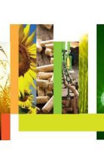 Au fost desemnaţi câştigătorii Competiţiei Moldova Eco-Energetică 2013