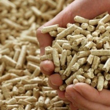 Se caută un partener privat pentru încălzirea cu biomasă a instituțiilor publice din raionul Anenii Noi
