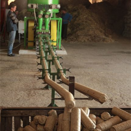 Moldova: planuri grandioase pentru Biomasă