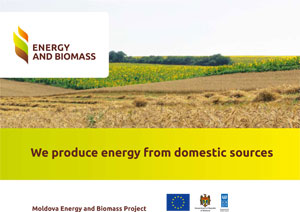 We produce energy from domestic sources