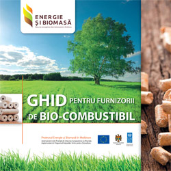 Ghid pentru furnizorii de Bio-Combustibil