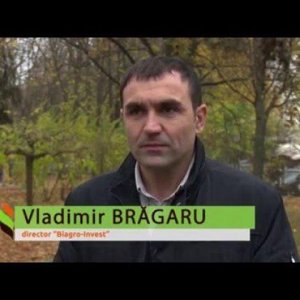 Proiectul Energie si Biomasa, istoria 8, scoala din Cuhurestii de Sus, Floresti